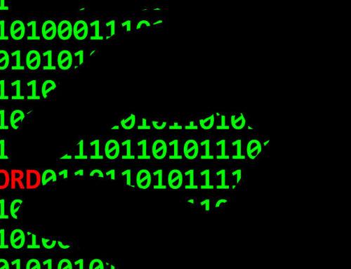 Resultado Pitchcom – Redbelt no Olhar Digital